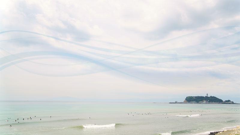 海と眠る 七里ガ浜 樹木葬
